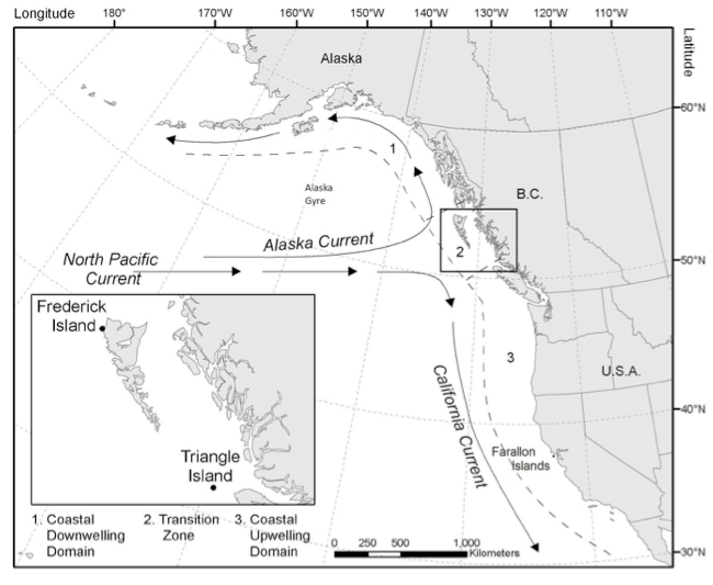 Map illustrating the main current systems and oceanographic