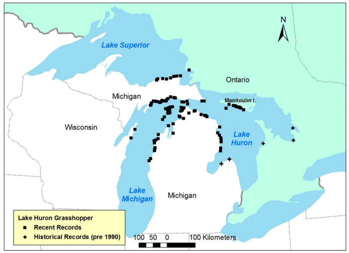 Map showing Global range of Lake Huron Grasshopper.