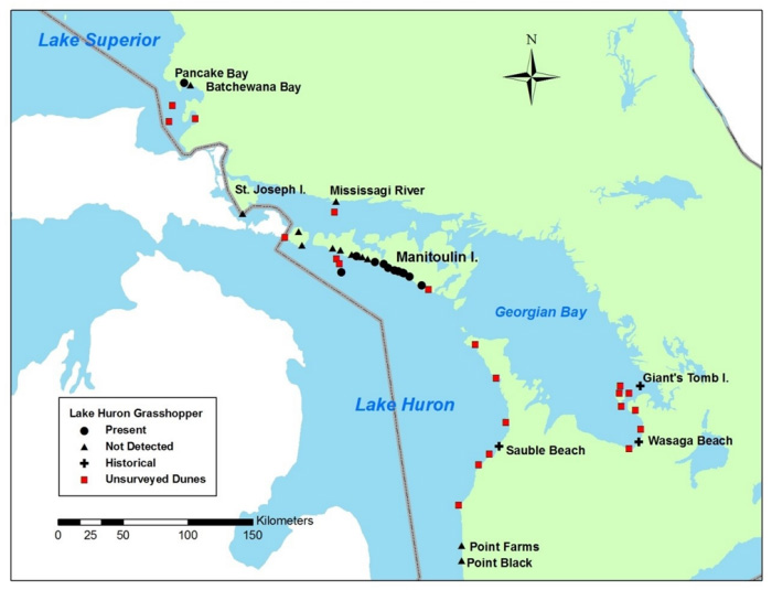 Map showing Canadian range of Lake Huron Grasshopper showing 2014 search effort