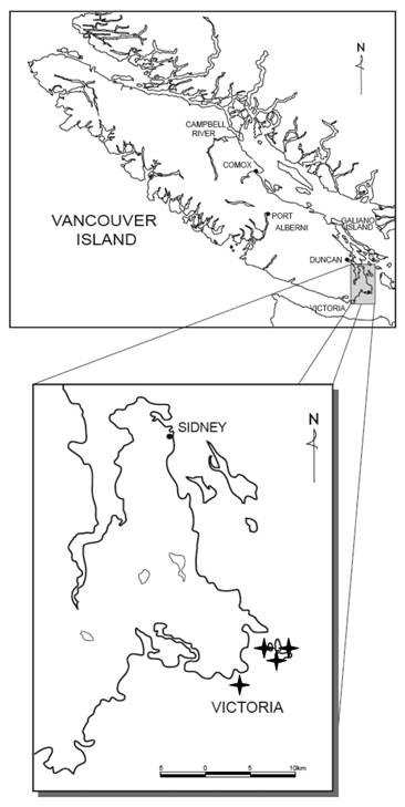 Map showing the distribution of the California Buttercup in Canada