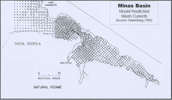 Diagram of prevailing local counter-clockwise circulation in the Minas Channel at the entrance to the Minas Basin. This counter-clockwise circulation limits the outward movement of Barnea truncata larvae.