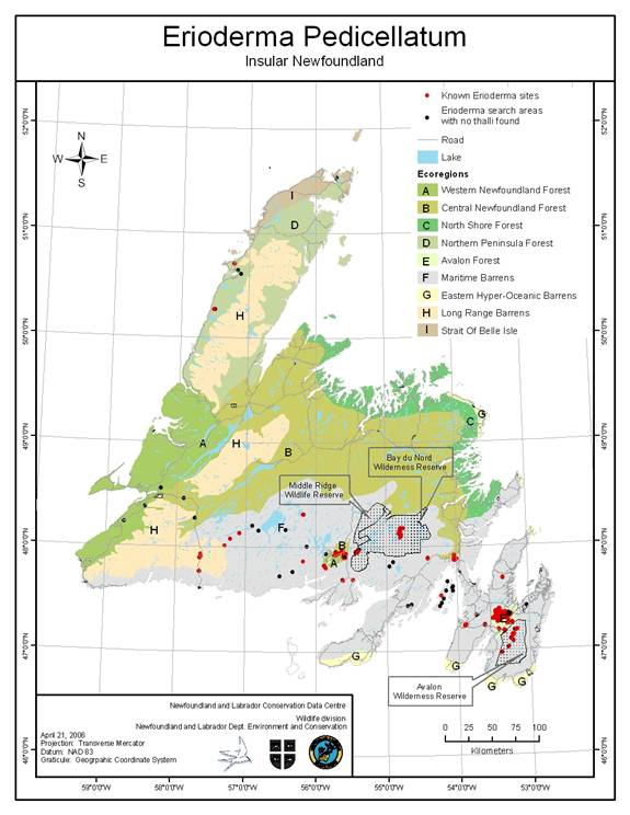 Figure 1 shows the known range of Boreal Felt Lichen of the boreal population on the Island of Newfoundland as of July 2006 and the island's ecoregions. The species is mostly found in the south of the island, primarily in the Maritime Barrens ecoregion.