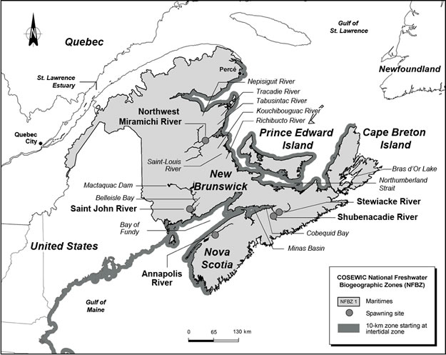 Map of the Maritimes National Freshwater Biogeographic Zone.