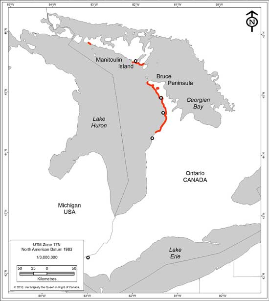 Figure 3. Current Ontario Distribution of Dwarf Lake Iris. Red lines indicate the range of extant populations. Open circles represent historic populations.
