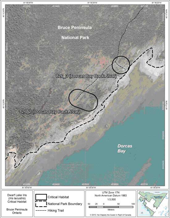 Figure 6. Fine-scale map of Dwarf Lake Iris critical habitat parcels 2 and 3 on the northern Bruce Peninsula.