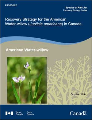 Species at Risk Act Recovery Strategy Series Recovery Strategy for the American Water-willow (Justicia americana) in Canada American Water-willow October 2010