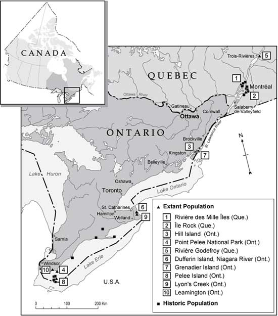 Figure 2. Distribution of extant and historic American Water-willow populations in Canada